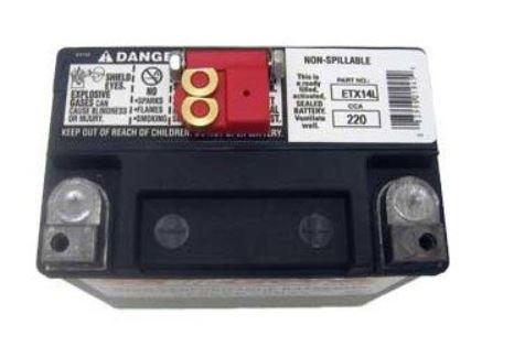 Batterie Deka poles